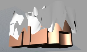 Frontbottom_Gehry