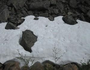 snow white and black stones