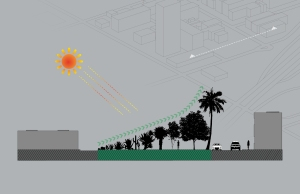 sun section 2-01