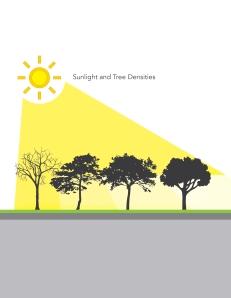 tree density-01