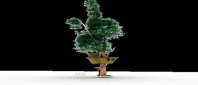 treehouse6