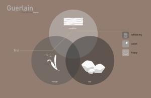 conceptual-fin