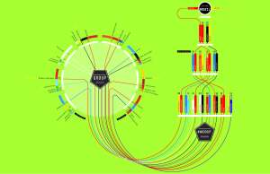 Tracing Diagram 3