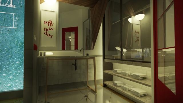 Guest Room Shower Room