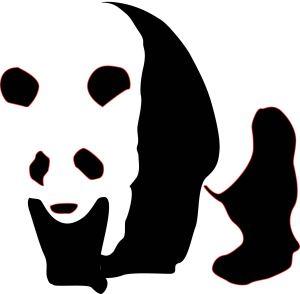 Panda_CLASSEXERCISEi