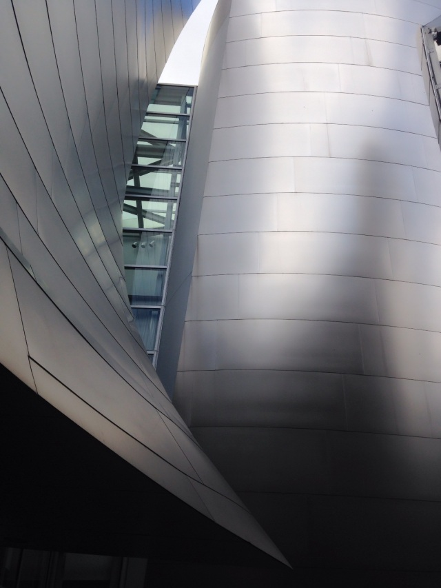 Concert Hall -Frank Gehry