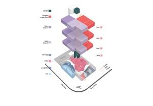 AXON circulation